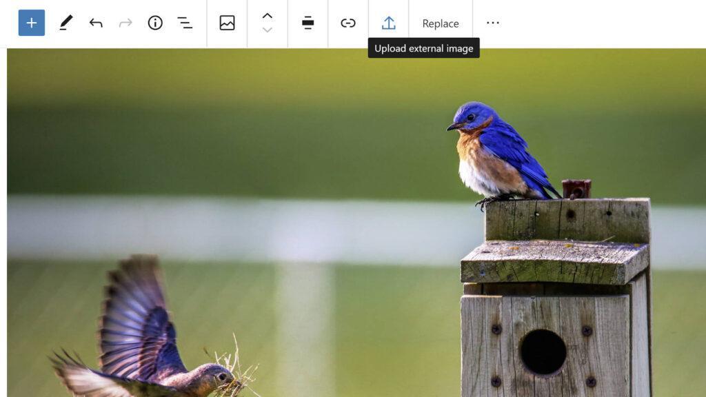 Нажмите кнопку загрузки внешнего изображения в блоке изображений Гутенберга.